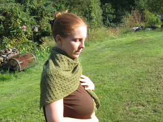 Evergreen-2012-1-pattern_small2