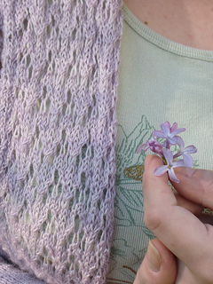 Pf4-lilac-lace_small2
