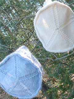 Cs5-2hats-in-tree_small2