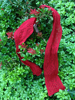 Pf-scarf-in-andromeda_small2