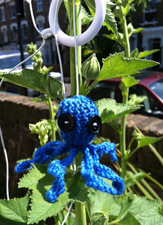 Catnip_octopus_small2
