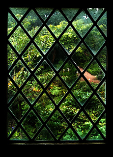 Garden-through-lattice-window_-_copy_small2