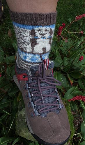 Socks_006_crop_medium