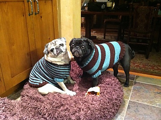 Molly_lucy_sweaters_small2