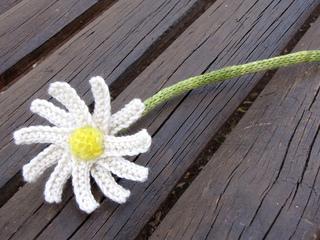 Dasiy_flower_book_small2