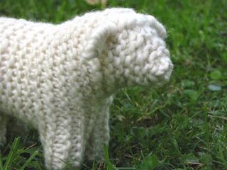 Sheep_4_small2