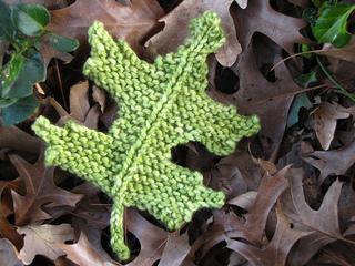 Pin_oak_leaf_small2