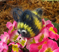 Bumble_bee1_small