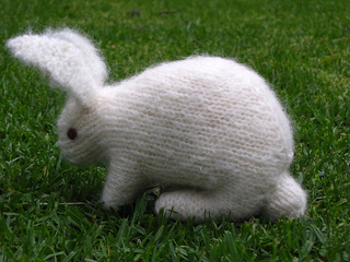 Rabbit2_small2