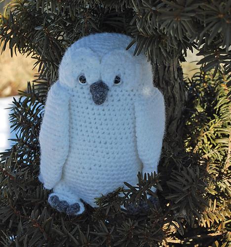 It's an owl!