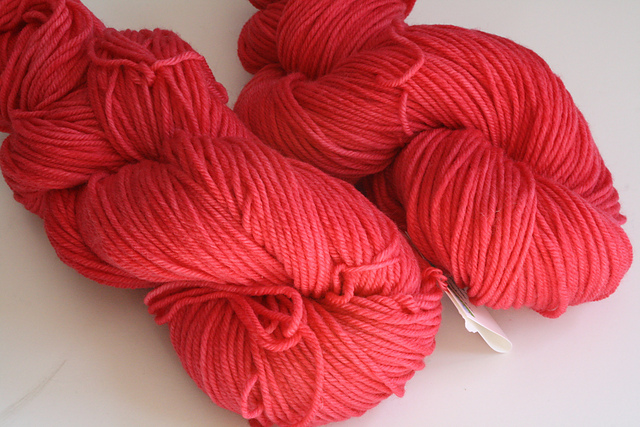 "Shadyside Farm Studio ""Watermelon"" on Krayon Box Worsted Superwash - 2 skeins"