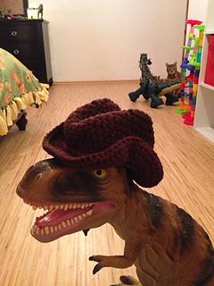 Cowboy_hat_small2