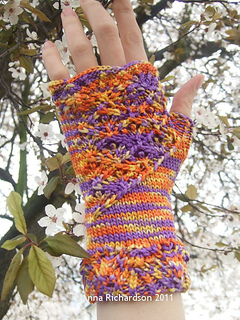 Hester_in_orange-purple_variegated_small2