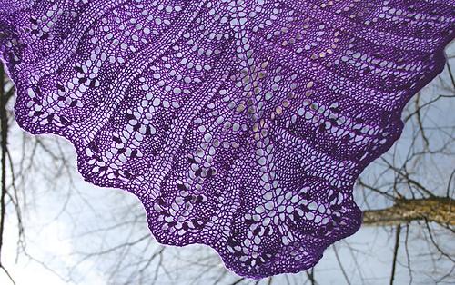 Lavender_tip_medium