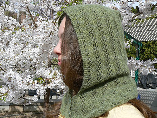 Lace_hood_small2