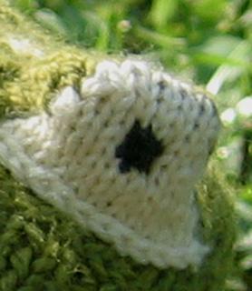 Frog_eye_web_small2