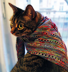 Truman_with_his_simple_things_shawlette_on_flickr_-_photo_sharing__small