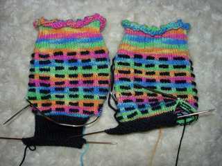 Wren_socks_small2