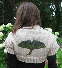 Gingko_shrug_etsy__0850_small