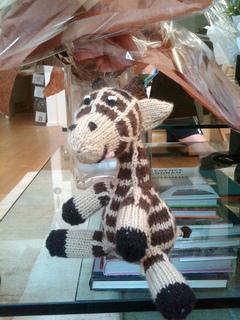 Giraffe1_small2