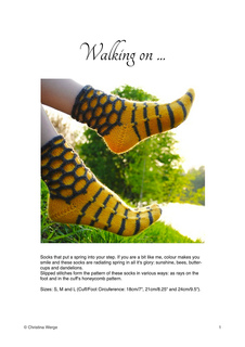 Wonsocksen_small2