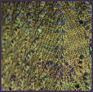 Mossybark-2_small2