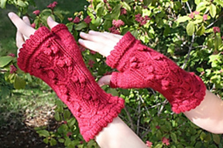 Apple_a_day_hand_mitts_0027_small2