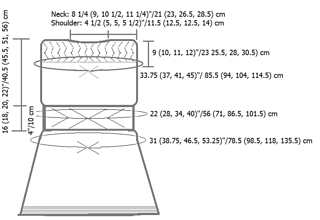 Transient_tunic_schematic_small2