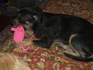 27-crochetmouse-026_small2