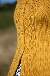Detailbuttonband_small2