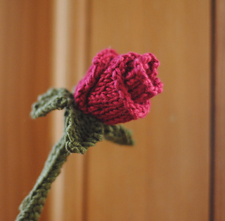 Rose__front_small2