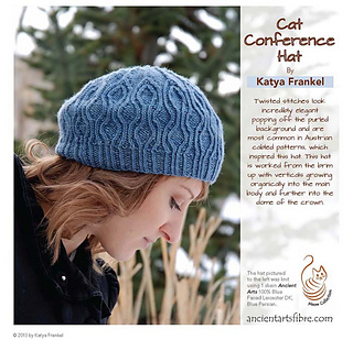 Cat_conference_hat_cover_small2
