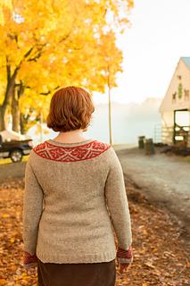 Rhinebeck_sweater-36_small2