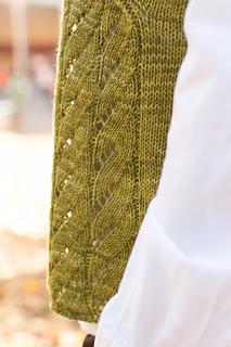 Rhinebeck_sweater-126_small2